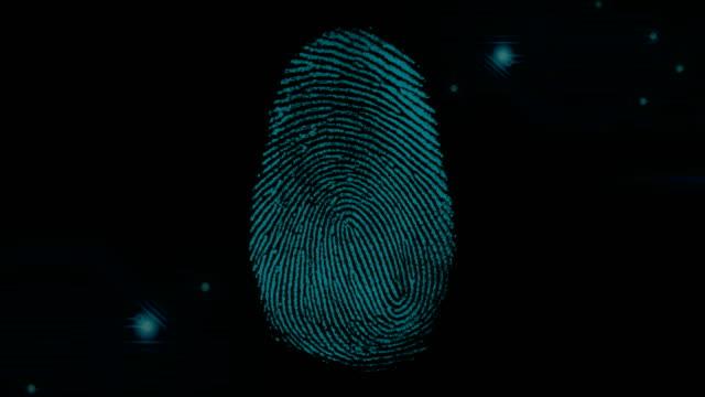 4K digital fingerprint scanning with digital line video