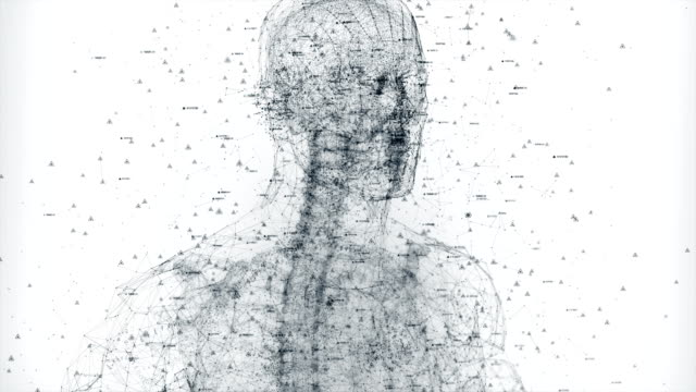 Digital Human body video