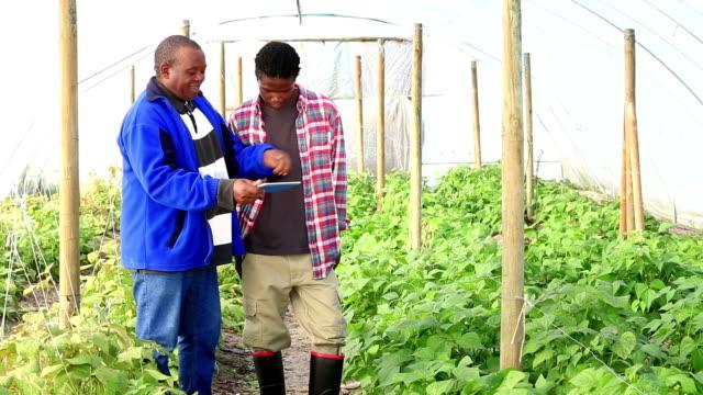 Digital tablet African Organic Farmers video