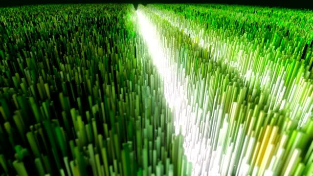 Champ numérique généré. Sentier et agitant plantes - Vidéo