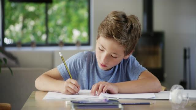 diligence gets homework done - solo un bambino maschio video stock e b–roll