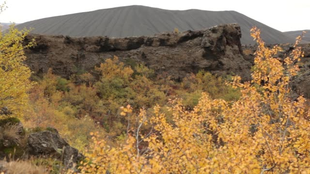 Dimmuborgir Iceland unusual lava rock formations trail fall colors windy video