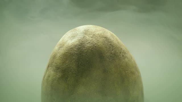 Dinosaur Egg In Misty Swamp
