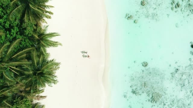 directly above a couple running on a beach - exotic stock videos & royalty-free footage