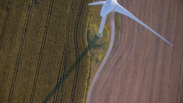 Directly above of agriculture cornfield and Wind turbine on the island Fehmarn - Schleswig-Holstein , Germany