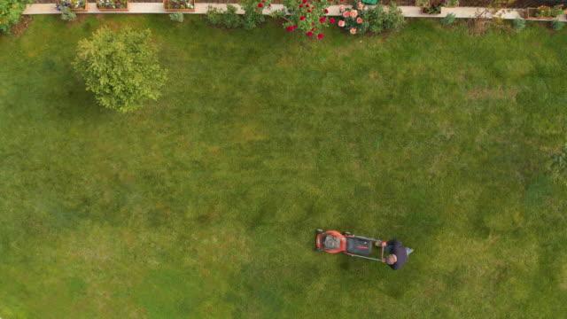 direttamente sopra la vista di un uomo che usa tosaerba in un giardino - giardino pubblico giardino video stock e b–roll
