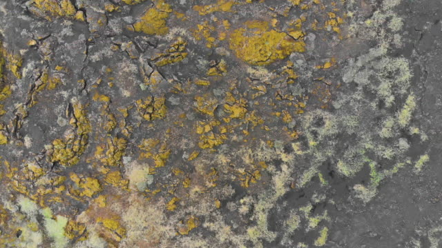 Directly Above View of Crusty Land Surface in Iceland