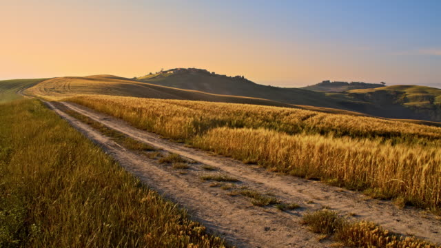 DS Dirt road among Tuscan hilly fields of wheat video