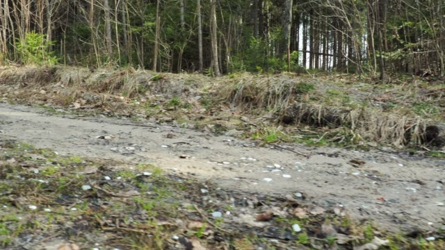 Dirt road in forest video
