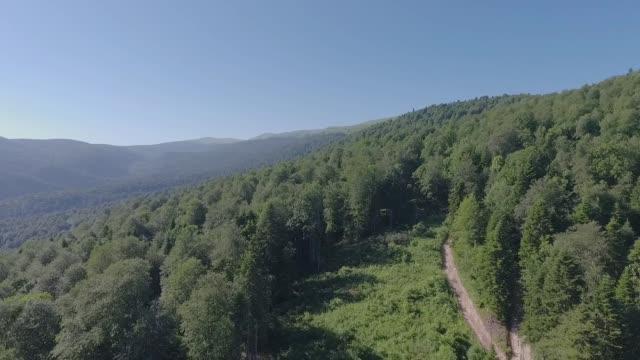 grusväg i fjäll skogen. utsikt från luften. - bergsrygg bildbanksvideor och videomaterial från bakom kulisserna