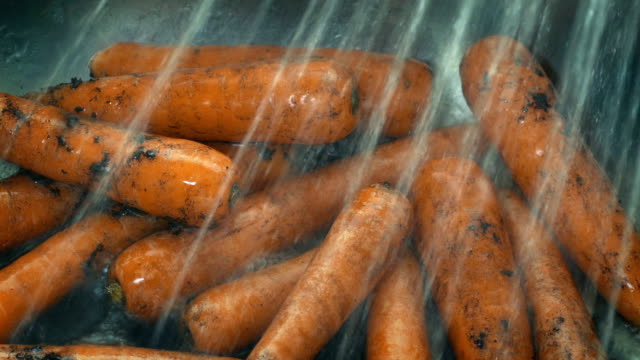 Dirty Carrots Get Soil Washed Off In Sink Closeup of carrots washing clean in the sink carrot stock videos & royalty-free footage
