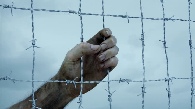 Dirty Man's Hand Grabs Barbed Wire Fence