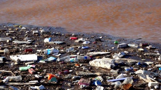 海水の汚汚汚染 - 水に浮かぶ点の映像素材/bロール
