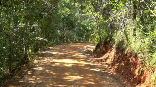 4K Dirty road to a remote village by 4x4 pick-up truck in the forest Northern Thailand. video