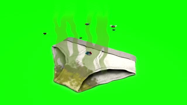 vídeos de stock e filmes b-roll de dirty smelly underpants. 3d animation in cartoon style. green screen, loopable. - cheiro desagradável