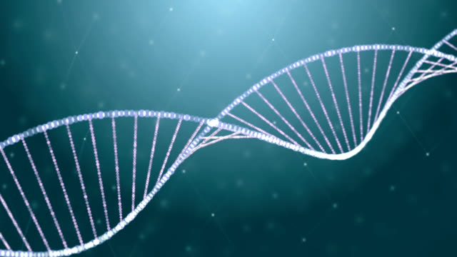 Dissappearing DNA helix in abstract particle chain video