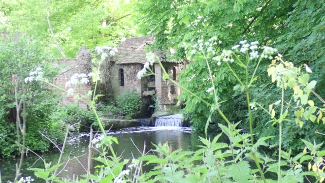 Disused water mill on the River Colne, Munden Estate, Watford video