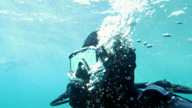 Diver Breathing Under the Water Slow motion shot of a diver breathing under the water. He is exhaling and air bubbles appear around him. aqualung diving equipment stock videos & royalty-free footage