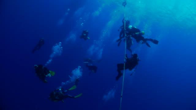 divers at deco stop after scuba diving - кораблекрушение стоковые видео и кадры b-roll