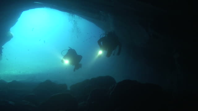 taucher erkunden sie eine höhle - sporttauchen stock-videos und b-roll-filmmaterial