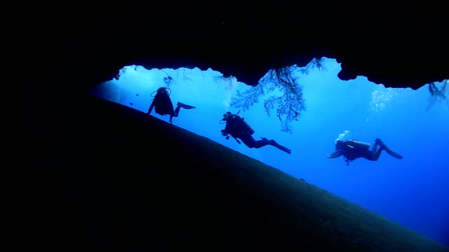 Divers explore Underwater. Full HD    scuba diving stock videos & royalty-free footage