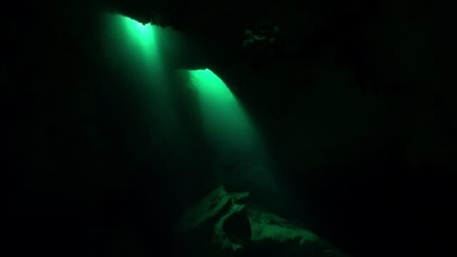Duikers in hol van onderwater Yucatan Mexico cenotes. video