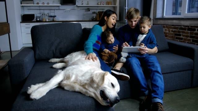 mångsidig familj med valp nätverk på tablet pc - hunddjur bildbanksvideor och videomaterial från bakom kulisserna