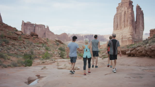 Diverse group hiking in Utah video