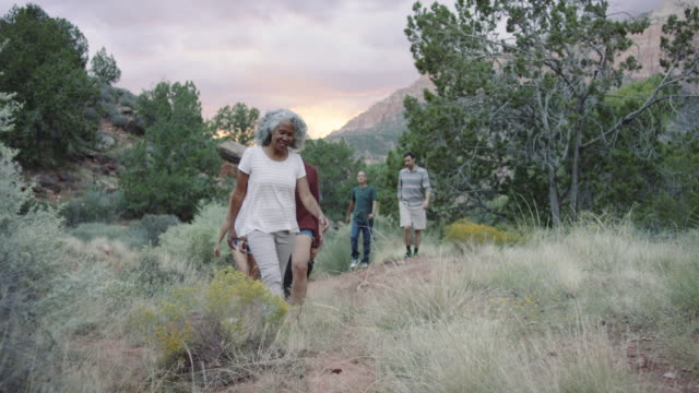 4K UHD: Diverse Group of Adults out for a Hike video
