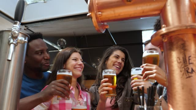 Diverse group of friends enjoying happy hour drinking beer toasting and smiling video