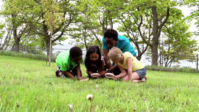 多様なグループのお子様には、草ひざまずく付き拡大鏡 ビデオ