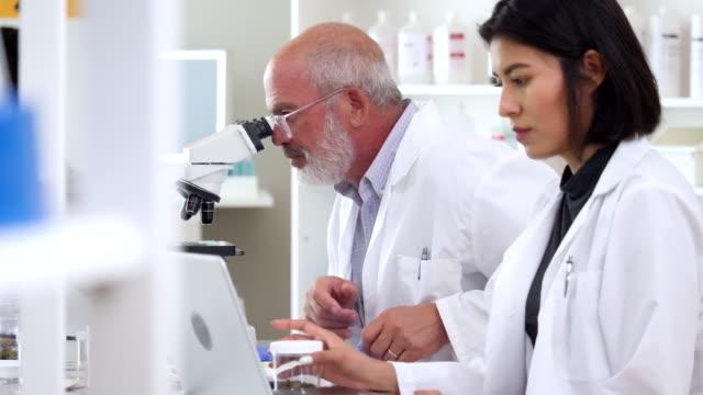 Diverse scientists examine soil samples