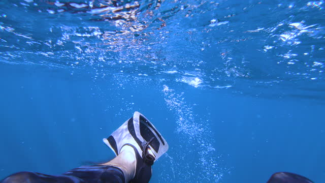 Diving flippers in action video