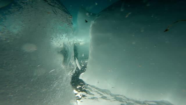 scuba diving in antarctica - antarktyda filmów i materiałów b-roll