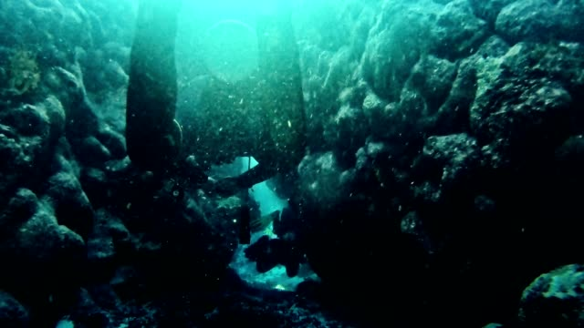 Diving into deep sea. Near surface Underwater shoot. Sunbeams. Diving trip aqualung diving equipment stock videos & royalty-free footage