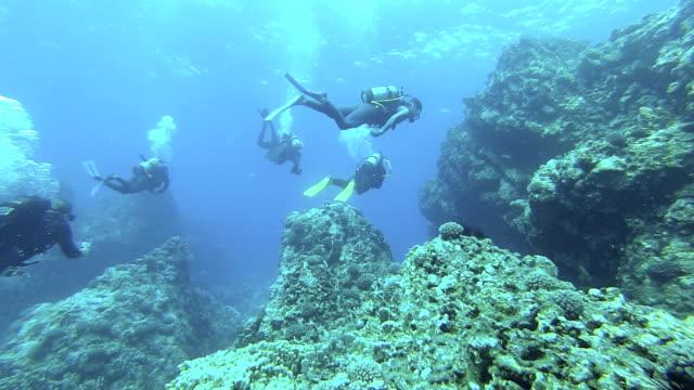 immersioni team - immersione subacquea video stock e b–roll