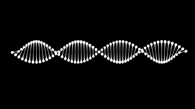 dna-helix - genforschung stock-videos und b-roll-filmmaterial