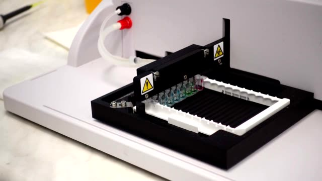 Dna Sequence Analysis Of The Ebola Virus. Pcr Technology video