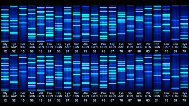 Dna sequence animation video