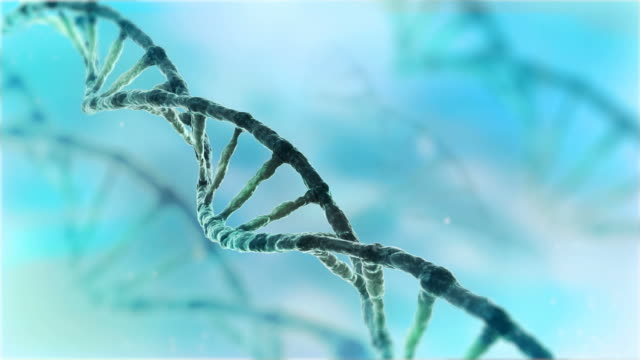 dna strang endlos wiederholbar - genforschung stock-videos und b-roll-filmmaterial