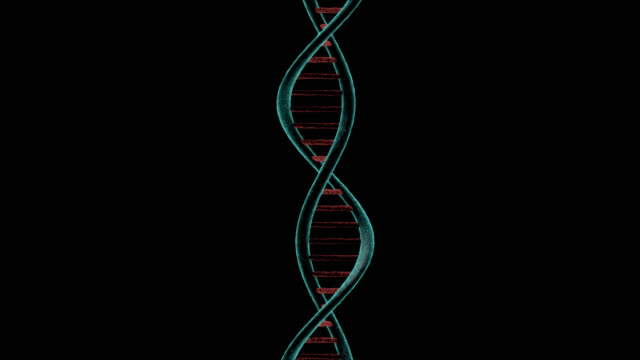 Dna Strands Chain gyrating on black background video