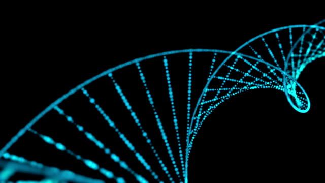 structure ADN - Vidéo