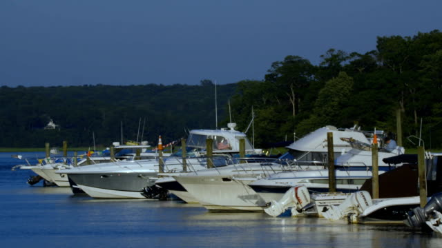 Docked Boats video
