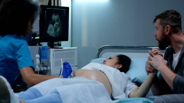 Doctor examining pregnant woman with ultrasound Medium shot of a young female doctor examining a pregnant woman with ultrasound scientific imaging technique stock videos & royalty-free footage