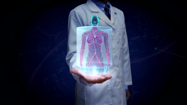 Doctor open palm,  Zooming front Female body and scanning Human blood vessel system. Blue X-ray light. video