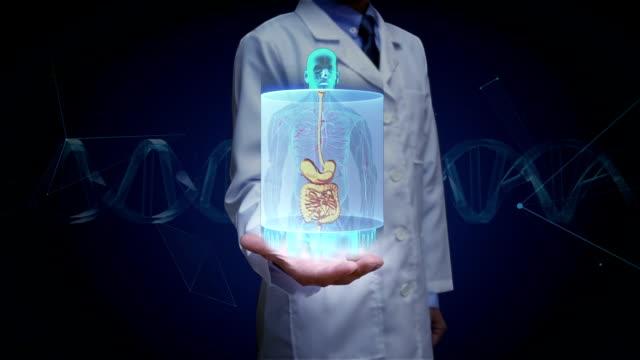 arzt offene hand, zoomen menschlichen körper, die inneren organe, verdauungssystem scannen. x-ray blaulicht. - menschlicher verdauungstrakt stock-videos und b-roll-filmmaterial