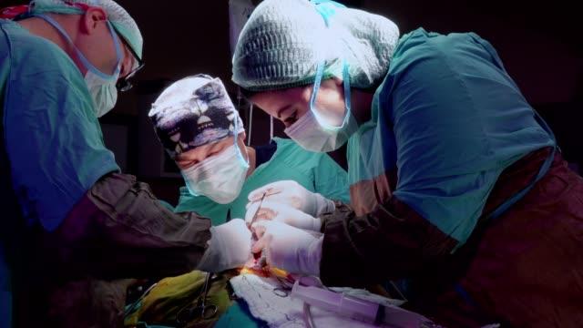 vídeos de stock, filmes e b-roll de médicos em cirurgia - marcapasso cirurgia cardíaca