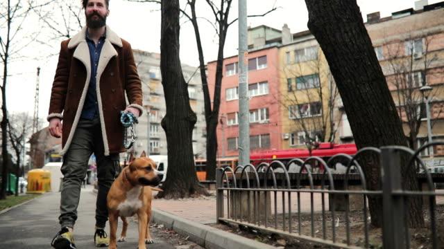 犬と公園を歩いて彼の所有者 ビデオ