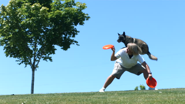Dog jumps of woman's back and catches frisbee, slow motion video