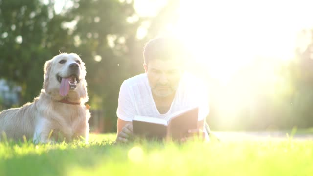 dog owner reading book with his pet in the park. - fedeltà video stock e b–roll